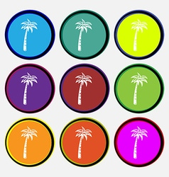 Palm icon sign nine multi colored round buttons vector