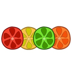 Bright citrus slices vector