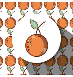 Delicious and fresh tropical oranges fruits vector