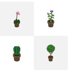 Isometric flower set of grower flower peyote and vector