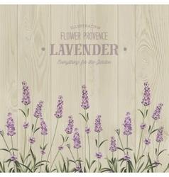 The lavender bouquet vector