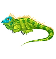 Green iguana crawling alone vector