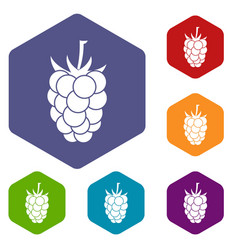 Blackberry fruit icons set hexagon vector