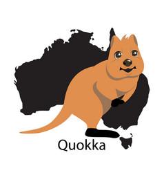 Quokka animall of australia vector