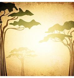 Africa acacia tree vector