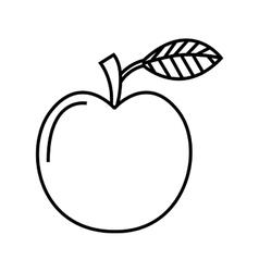 apple fruit fresh icon vector image vector image