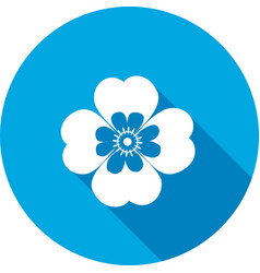 Chamomile forget-me-not flower icons floral vector