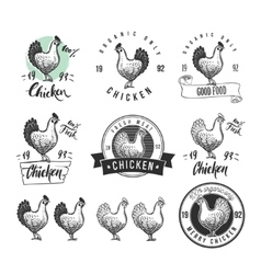 Chicken product logotypes set Hen meat and eggs vector image