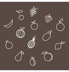 Contours of the Fruit vector image vector image
