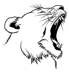 Lioness Head vector image