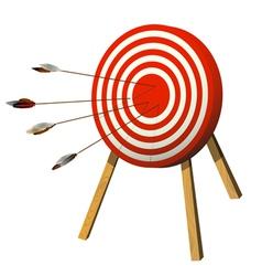 arrows target vector image