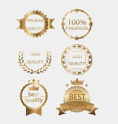 badge golden gold medal seal quality label vector image