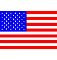 Flag of america vector image vector image