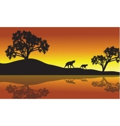 Panther in riverbank scecnery vector image vector image