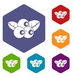 Blueberries icons set hexagon vector