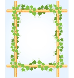 Ivy around bamboo border vector