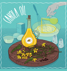 Canola oil used for cooking vector