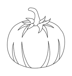 Pumpkin icon outline Singe vegetables icon from vector image