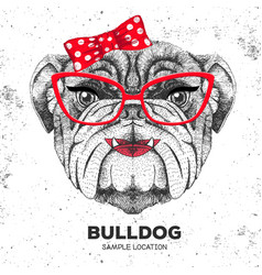 Retro hipster animal bulldog hand drawing muzzle vector