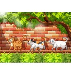 Three cats walking on the wall vector