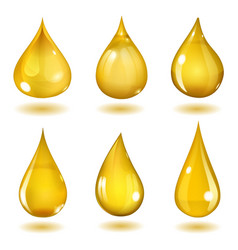 Yellow drops vector