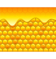 Honeycombs with honey vector