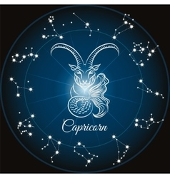 Zodiac capricorn sign vector