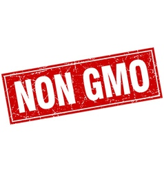 Non gmo red square grunge stamp on white vector