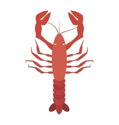 Red lobster sealife top view vector