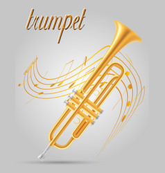 Trumpet wind musical instruments stock vector