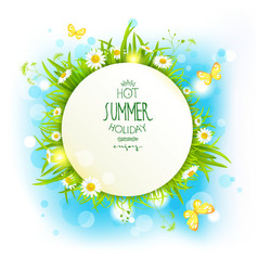 Banner with summer flowers vector image vector image