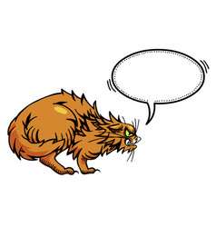 Cartoon image of angry cat vector