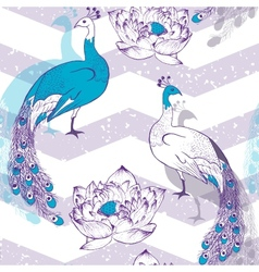 Seamless pattern with peacock birds in vector image
