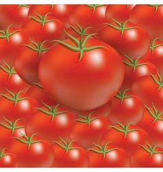 Tomato background vector