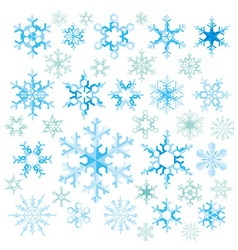 Crystal of colored snowflakes with grain vector
