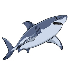Drawing of a great white shark isolated object vector