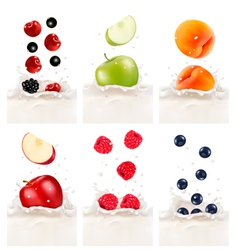 Colorful fresh fruits falling into the milky vector image vector image