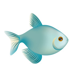 Colorful realistic fish aquatic animal icon vector