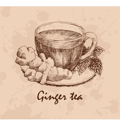 Ginger tea vector