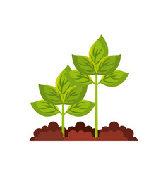 Plant agriculture isolated icon vector