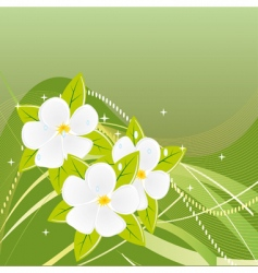 abstract green background with magnolias vector image vector image