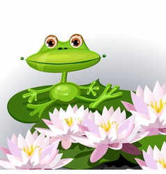 cartoon frog and water lilies vector image
