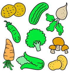 collection stock fresh vegetable set doodles vector image