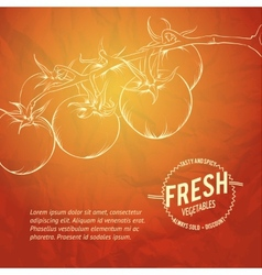 Culinary cover background vector image