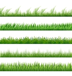 Green grass pattern set macro borders isolated on vector