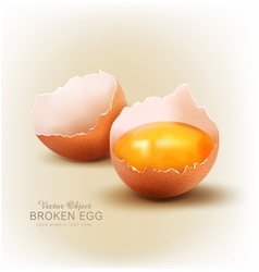 object - a broken egg with the yolk vector image