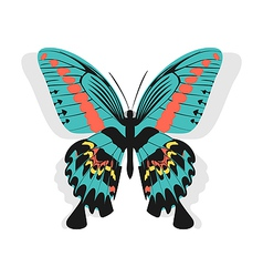 Vintage single colorful butterfly isolated on vector image