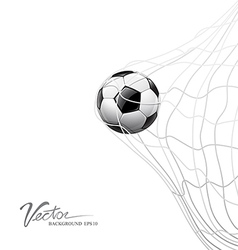 Soccer ball in net on goal vector image