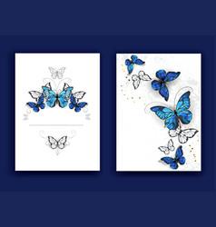 brochure design with butterflies morpho vector image
