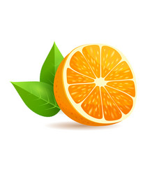 Sliced in half orange with leaves realistic vector